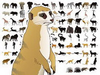 50 models of animals and silhouettes vector material