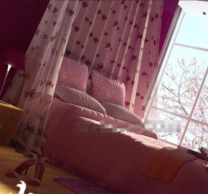 Pink peach blossom bright bedroom