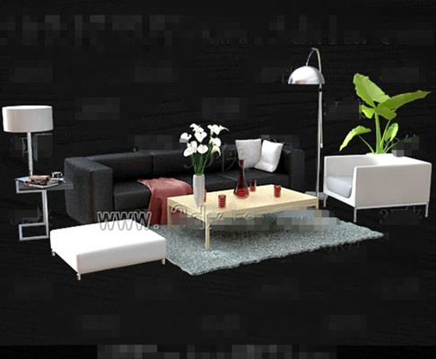Black and white simple and stylish sofa combination